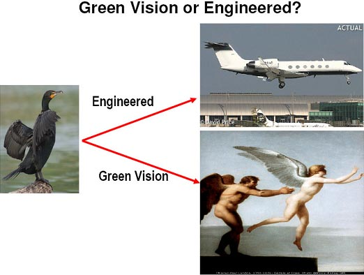 Green Vision or Engineered?