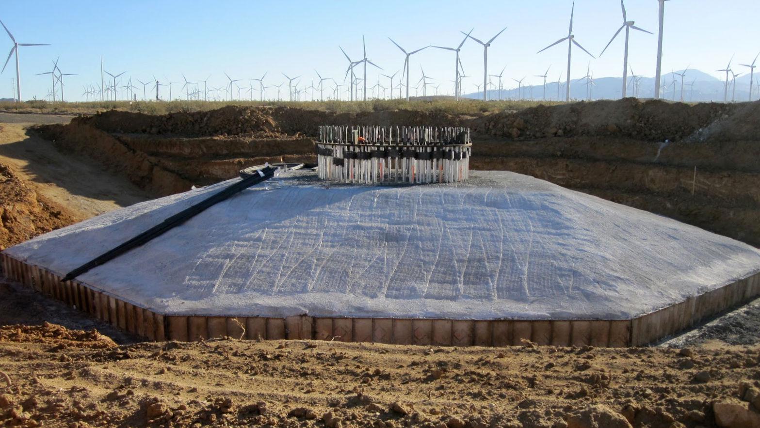 Greenies Think Concrete Is Green Epaw European